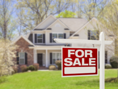You May Locate Homes for Sale on the Net Readily