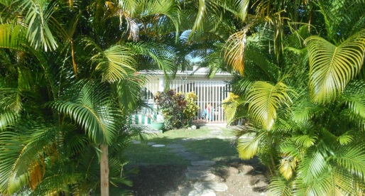 Caribbean Living: What $250,000 USD Buys You in Barbados