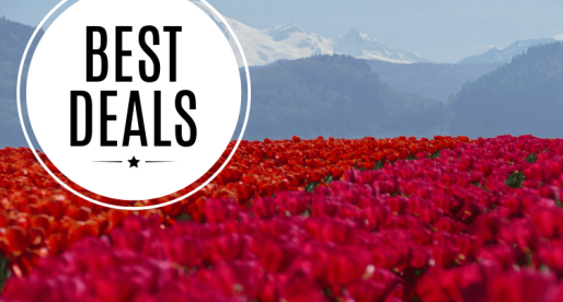 Best Real Estate Deals in Abbotsford