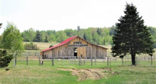 5 Properties for Sale in Canada with Equestrian Potential