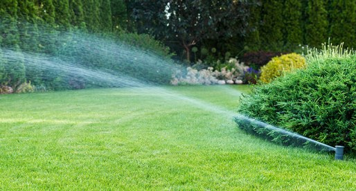 The Benefits of Owning a Sprinkler System