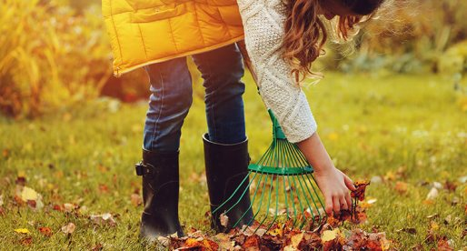 8 Tips on How to Prepare Your Lawn for the Cold Season