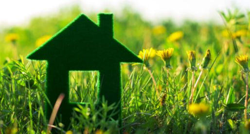 11 Simple Ways to Make Your Home Greener