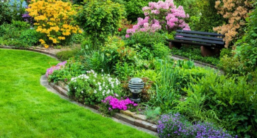 10 Garden Plants That Will Reduce Your Landscape Maintenance