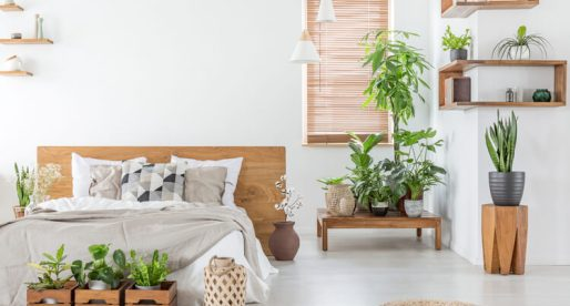 Home Updates that Focus on Health and Wellness