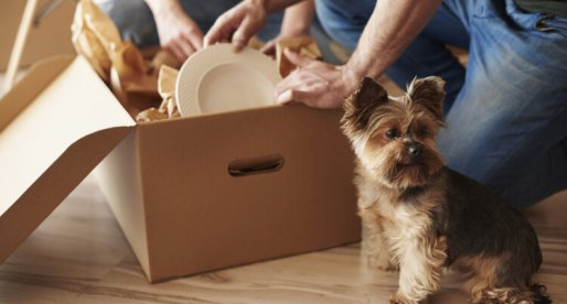 Moving? Tips to Ease Your Move to the New House