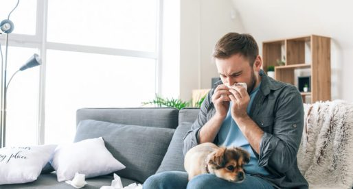 How to Eliminate the Most Irritating Home Allergens