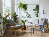 5 Creative Ways to Decorate with Plants
